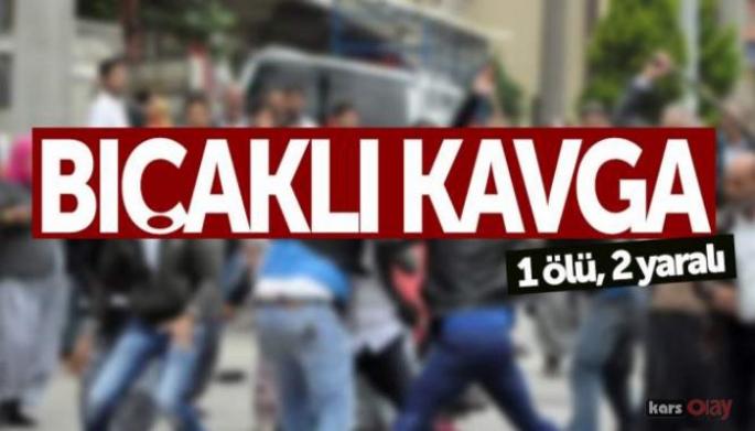 Ardahan'da Bıçaklı Kavga Kanlı Bitti!