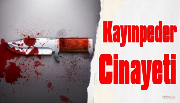 Ardahan'da Kayınpeder Cinayeti!