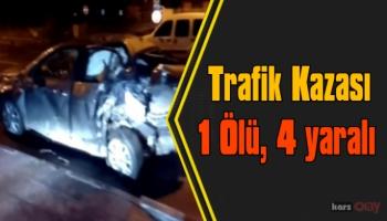 Ardahan'da trafik kazası; 1 ölü, 4 yaralı