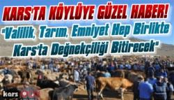 Hayvan Pazarında Artık Kimse 'Değnekçilik' Yapamayacak!