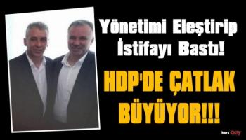 HDP Belediye Meclis Üyesi Ali Bağ Partisinden İstifa Etti!