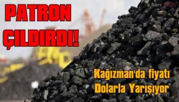 Kağızman'da Kömür Fiyatları Dolarla Yarışıyor!