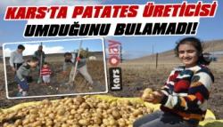 Kars'ta Patates Üreticisi Umduğunu Bulamadı