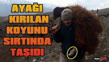 Merhametli Hayvan Sahibi, Ayağı Kırılan Koyunu Sırtında Taşıdı!