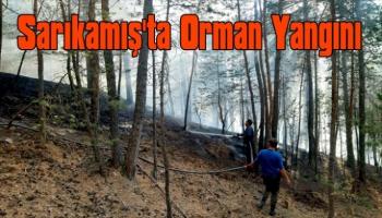 Sarıkamış'ta Orman Yangını!