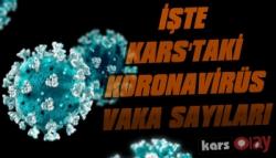 Vali Öksüz Kars'taki Koronavirüs Sayılarını Açıkladı