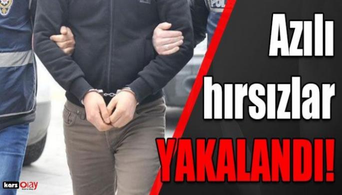 Kars'ın Azılı Hırsızları Yakalandı