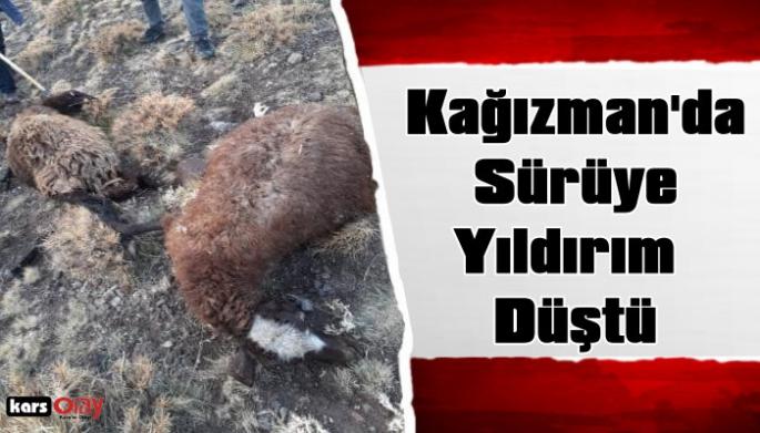 Kars'ın Kağızman İlçesinde  Koyun Sürüsüne Yıldırım Düştü!