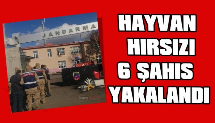 Kars Jandarma, Hayvan Hırsızı 6 şahsı yakaladı
