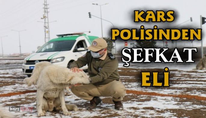 Kars Polisinden Şefkat eli