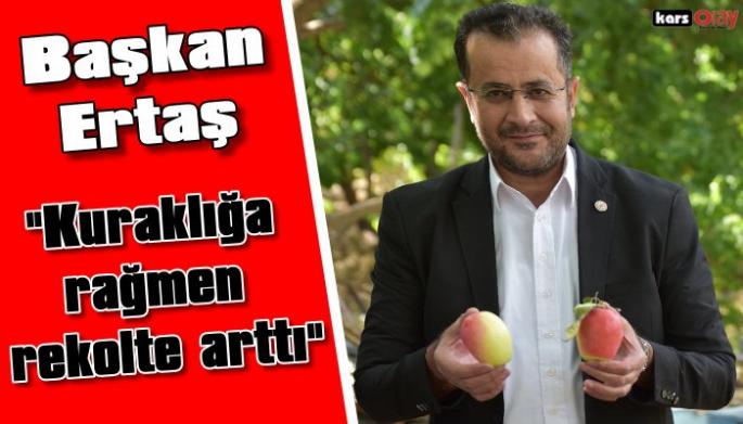 Kars Ziraat Odası Başkanı Adem Ertaş, 'kuraklığa rağmen uzun elma'da rekolte arttı'