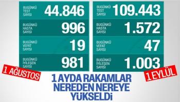 Türkiye'de Koronavirüs Salgınında Günün Tablosu
